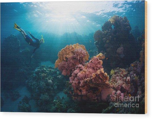 Free Diver Exploring Vivid Coral Reef Wood Print
