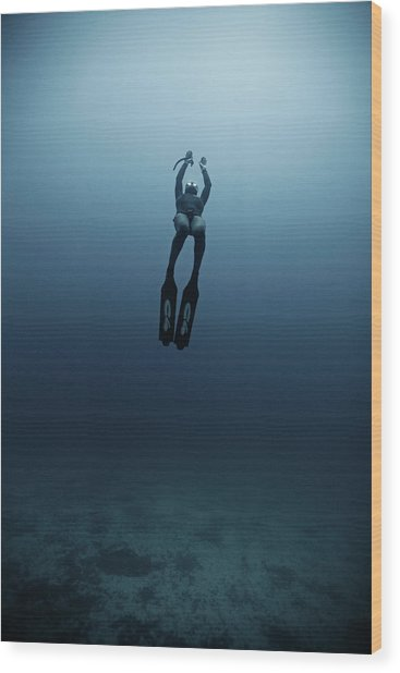 Freediving Wood Print by Underwater Graphics