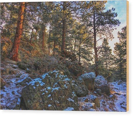 Wood Print featuring the photograph Fresh Snow On Fillius Ridge by Dan Miller