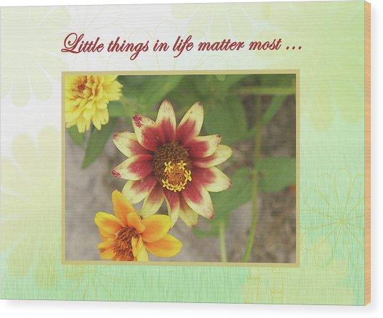 Friendship, A Smiling Indian Blanket Flower  Wood Print