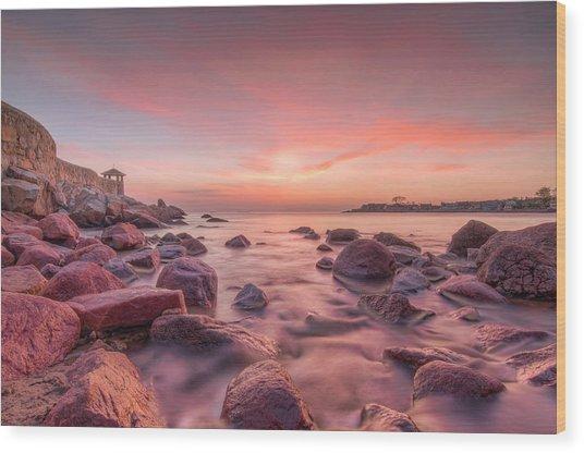 Front Beach Dawn Wood Print