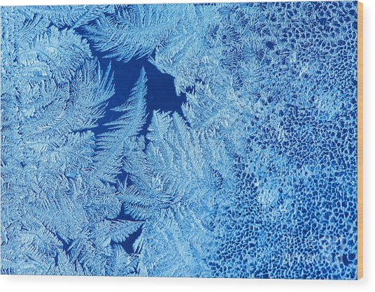 Frost Patterns On Window Glass Wood Print