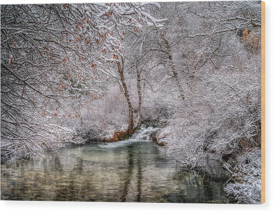 Frosty Pond Wood Print