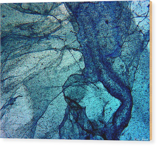 Frozen In Blue Wood Print