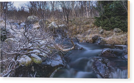 Frozen River And Winter In Forest Wood Print
