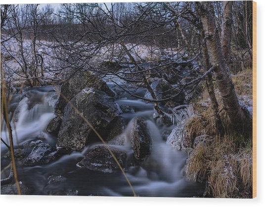 Frozen Stream In Winter Forest Wood Print