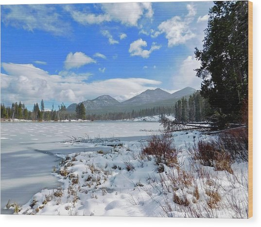 Wood Print featuring the photograph Frozen Water by Dan Miller