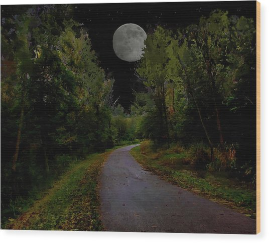 Full Moon Over Forest Trail Wood Print by Cedric Hampton