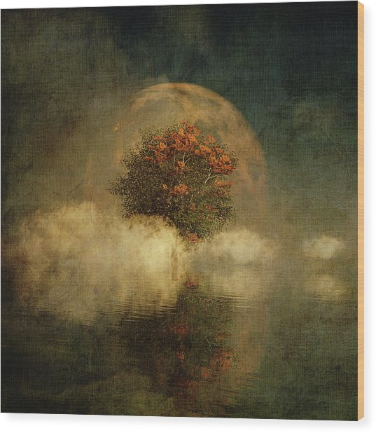 Full Moon Over Misty Water Wood Print