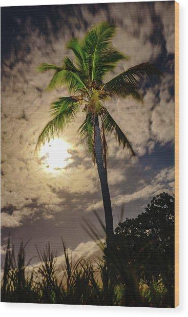 Full Moon Palm Wood Print