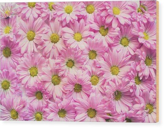 Full Of Pink Flowers Wood Print