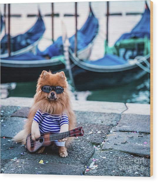 Funny Dog At The Carnival In Venice Wood Print
