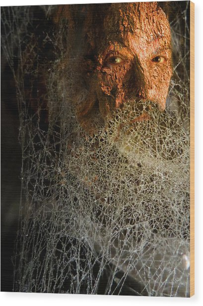 Wood Print featuring the digital art Gandalf - Cobwebby Self-portrait by Attila Meszlenyi