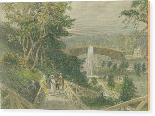 Garden At Fairmount Wood Print