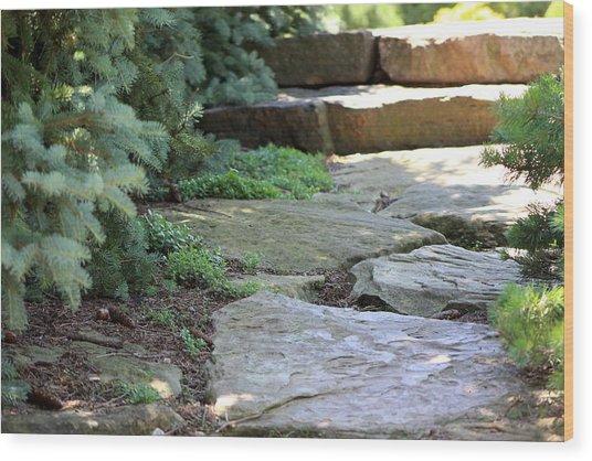 Garden Landscape - Stone Stairs Wood Print