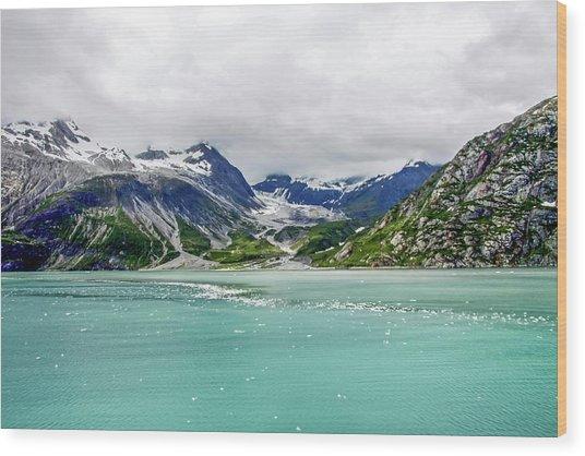Glacier Bay 4 Wood Print