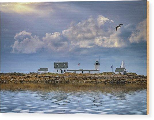 Goat Island Lighthouse Wood Print