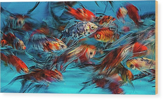 Gold Fish Abstract Wood Print