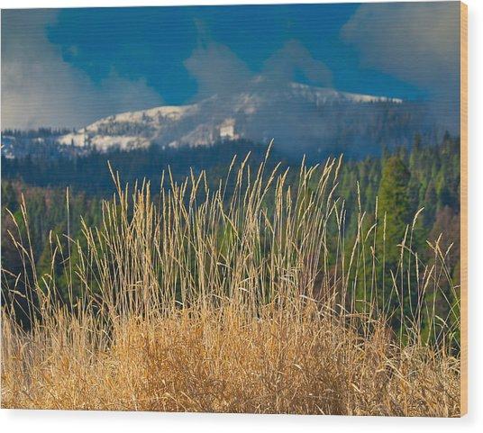 Gold Grass Snowy Peak Wood Print