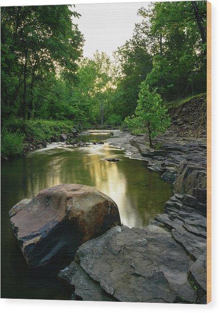 Golden Creek Wood Print