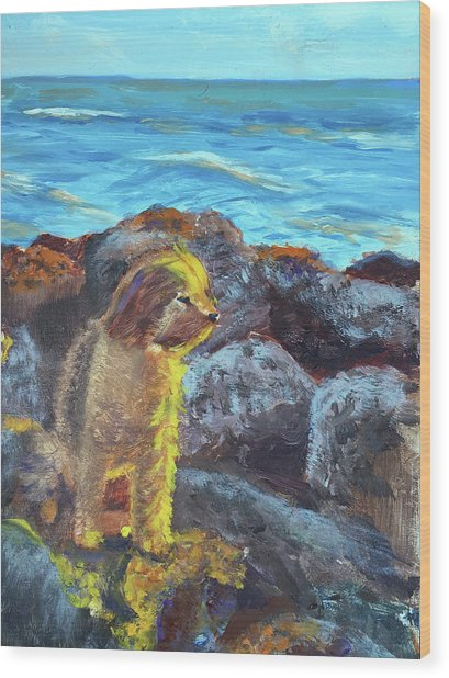 Golden Dog Wood Print
