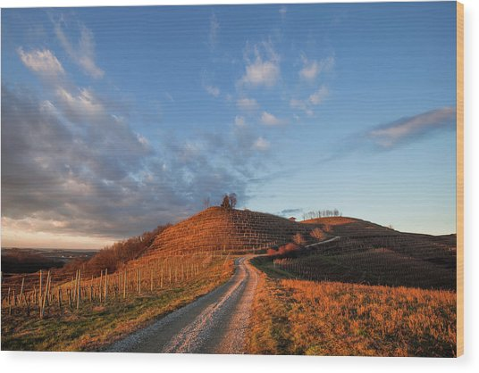 Wood Print featuring the photograph Golden Hill by Davor Zerjav