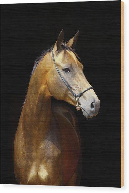 Golden Horse Wood Print