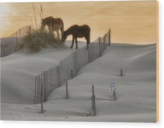 Golden Horses Wood Print