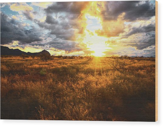 Golden Light Of Southern Arizona Wood Print