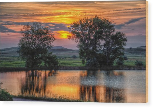 Golden Pond At 36x60 Wood Print