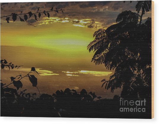 Golden Sunset On Strawberry Hill Wood Print