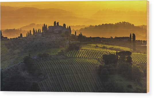 Golden Tuscany Wood Print