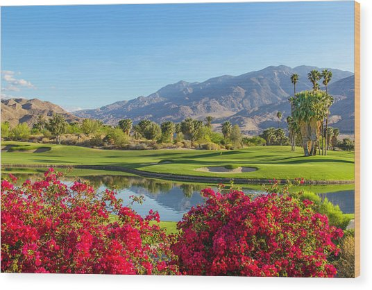 Golf Course In Palm Springs, California Wood Print