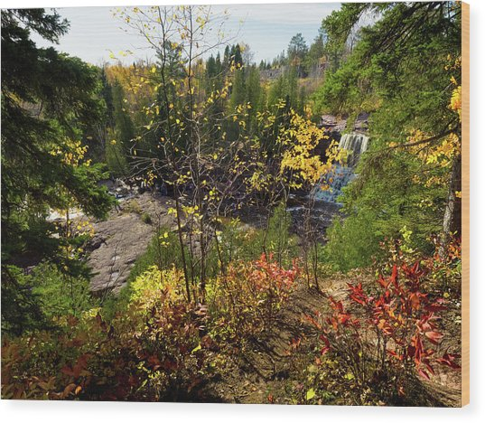 Wood Print featuring the photograph Gooseberry Falls From Above by Whitney Leigh Carlson