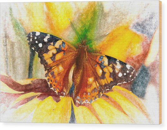 Gorgeous Painted Lady Butterfly Wood Print