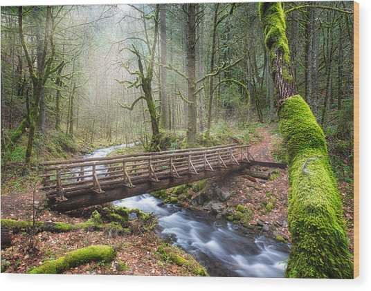 Wood Print featuring the photograph Gorton Creek by Nicole Young