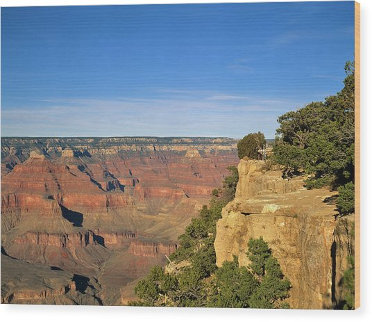 Grand Canyon, Arizona, Usa Wood Print by Travel Ink