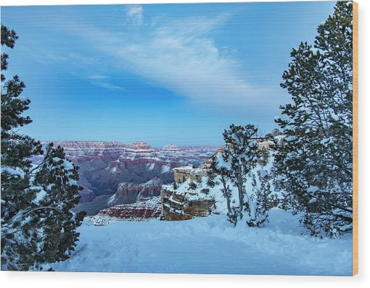 Grand Canyon Blue Hour Wood Print