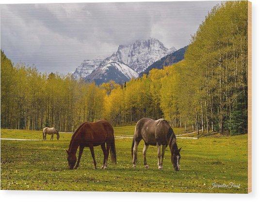 Grazing In Aspen Wood Print