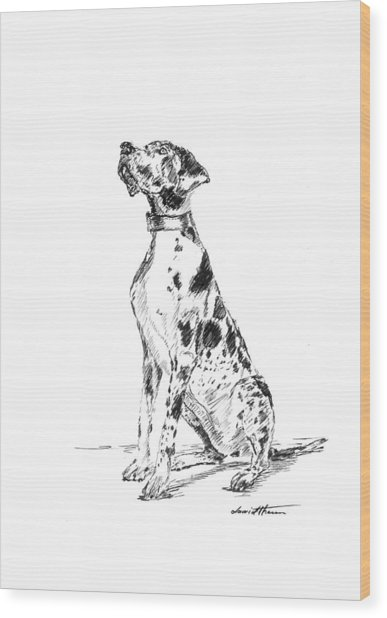 Great Dane 02 Wood Print