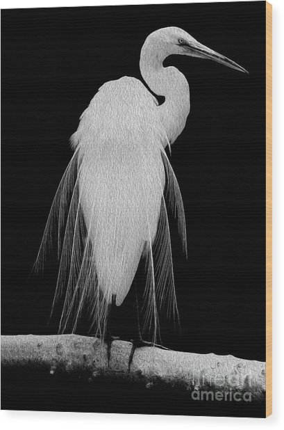 Wood Print featuring the digital art Great Egret In Full Bloom I - L by Kenneth Montgomery