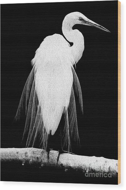 Great Egret In Full Bloom I - L Wood Print