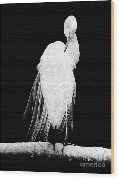 Wood Print featuring the digital art Great Egret In Full Bloom II by Kenneth Montgomery