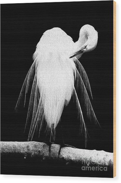 Wood Print featuring the digital art Great Egret In Full Bloom IIi by Kenneth Montgomery