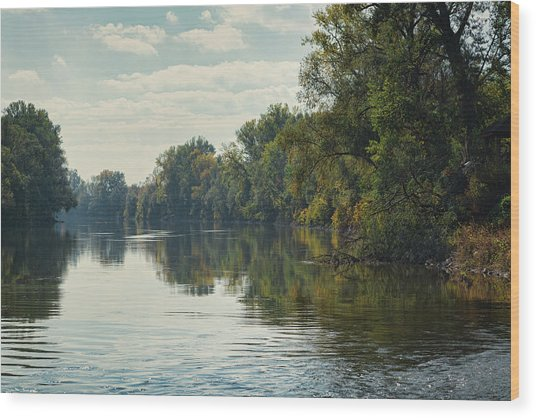 Great Morava River Wood Print