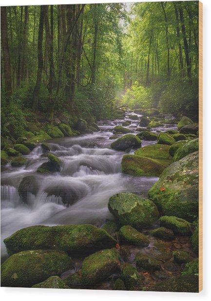 Great Smoky Mountains Gatlinburg Tennessee Wood Print