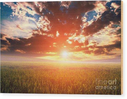 Green Field And Beautiful Sunset Wood Print