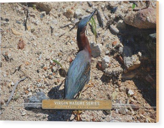 Green Heron Strut - Virgin Nature Series Wood Print