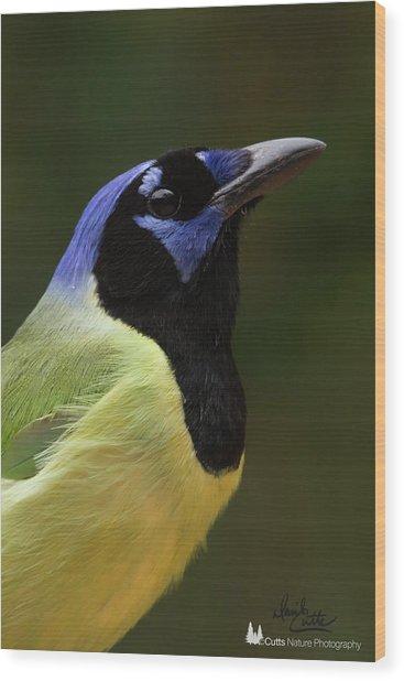 Green Jay Portrait Wood Print