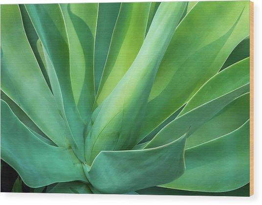Green Minimalism Wood Print